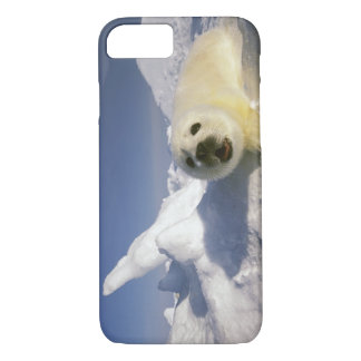 North America, Canada, Gulf of St. Lawrence. 5 iPhone 7 Case