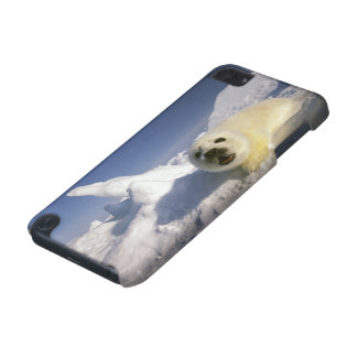 North America, Canada, Gulf of St. Lawrence. 5 iPod Touch 5G Cover
