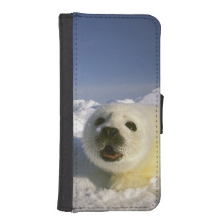 North America, Canada, Gulf of St. Lawrence. 5 Phone Wallets