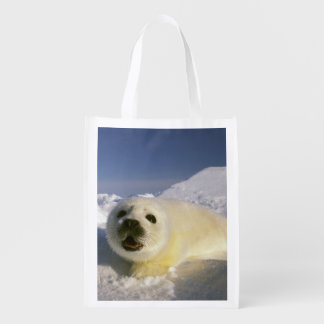North America, Canada, Gulf of St. Lawrence. 5 Reusable Grocery Bag