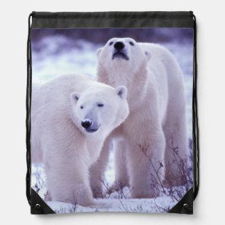 North America, Canada, Manitoba, Churchill. 2 Drawstring Backpack