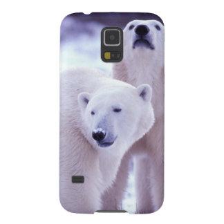 North America, Canada, Manitoba, Churchill. 2 Galaxy S5 Cover