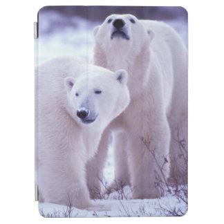 North America, Canada, Manitoba, Churchill. 2 iPad Air Cover
