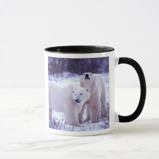 North America, Canada, Manitoba, Churchill. 2 Mug