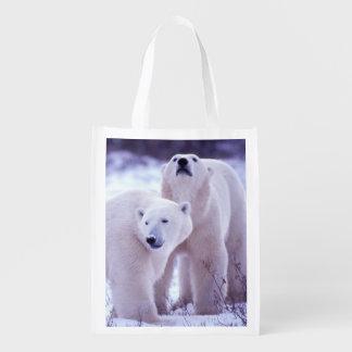 North America, Canada, Manitoba, Churchill. 2 Reusable Grocery Bag