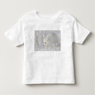 North America, Canada, Manitoba, Churchill. 3 Toddler T-Shirt