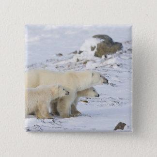 North America, Canada, Manitoba, Churchill. 4 15 Cm Square Badge