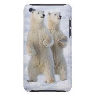 North America, Canada, Manitoba, Churchill. 5 Barely There iPod Cases