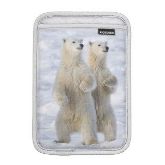 North America, Canada, Manitoba, Churchill. 5 iPad Mini Sleeve
