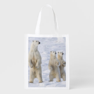 North America, Canada, Manitoba, Churchill. 5 Reusable Grocery Bag