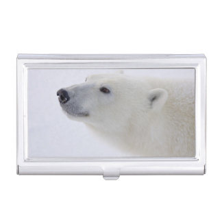 North America, Canada, Manitoba, Churchill. 6 Business Card Holder