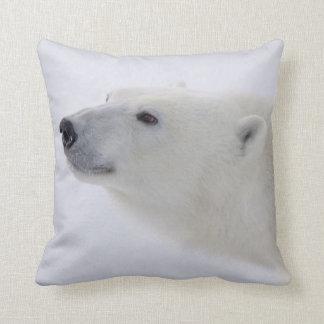 North America, Canada, Manitoba, Churchill. 6 Cushion