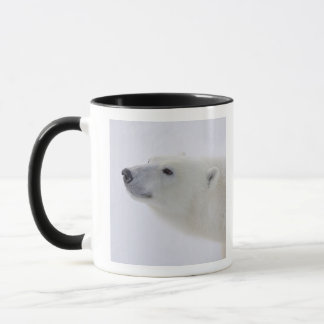 North America, Canada, Manitoba, Churchill. 6 Mug
