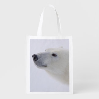 North America, Canada, Manitoba, Churchill. 6 Reusable Grocery Bag