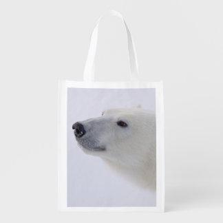 North America, Canada, Manitoba, Churchill. 6 Grocery Bag
