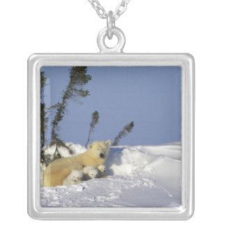 North America, Canada, Manitoba, Churchill. 7 Silver Plated Necklace