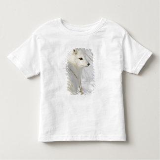 North America, Canada, Manitoba, Churchill. Toddler T-Shirt
