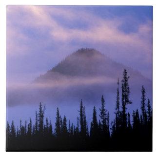 North America, Canada, Northwest Territories, Large Square Tile