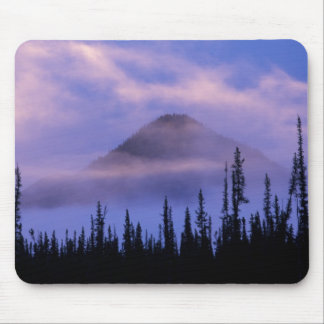 North America, Canada, Northwest Territories, Mouse Mat