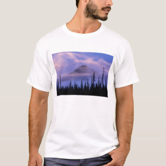North America, Canada, Northwest Territories, T-Shirt