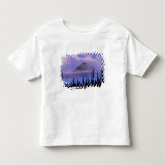 North America, Canada, Northwest Territories, Toddler T-Shirt