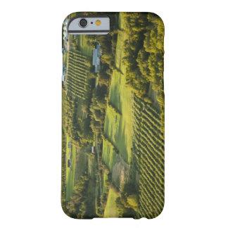 North America, Canada, Nova Scotia, Annapolis Barely There iPhone 6 Case