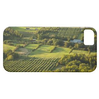 North America, Canada, Nova Scotia, Annapolis iPhone 5 Covers