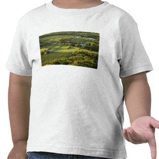 North America, Canada, Nova Scotia, Annapolis T Shirts