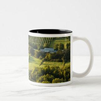 North America, Canada, Nova Scotia, Annapolis Two-Tone Coffee Mug