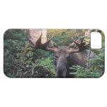 North America, Canada, Nova Scotia, Cape Breton iPhone 5 Case