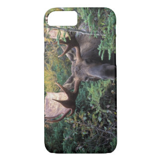 North America, Canada, Nova Scotia, Cape Breton iPhone 8/7 Case