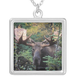 North America, Canada, Nova Scotia, Cape Breton Silver Plated Necklace
