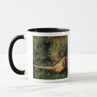 North America, Canada, Nova Scotia, Eastern 2 Mug