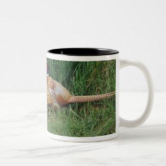 North America, Canada, Nova Scotia, Eastern 3 Two-Tone Coffee Mug