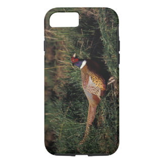 North America, Canada, Nova Scotia, Eastern iPhone 8/7 Case