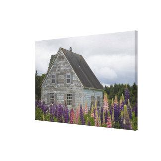 North America, Canada, Prince Edward Island, Canvas Print