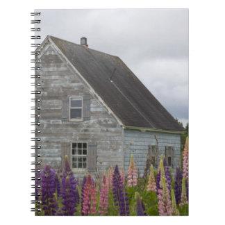 North America, Canada, Prince Edward Island, Notebook