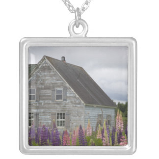North America, Canada, Prince Edward Island, Silver Plated Necklace