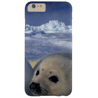 North America, Canada, Quebec, Iles de la 2 2 Barely There iPhone 6 Plus Case