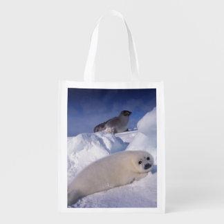North America, Canada, Quebec, Iles de la 2 2 Reusable Grocery Bag