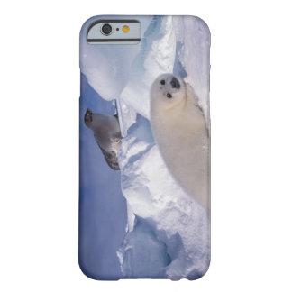 North America, Canada, Quebec, Iles de la 2 Barely There iPhone 6 Case