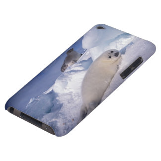 North America, Canada, Quebec, Iles de la 2 Barely There iPod Case