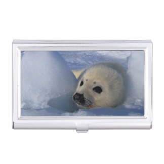 North America, Canada, Quebec, Iles de la 2 Business Card Holder