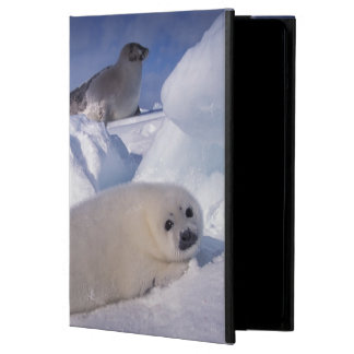 North America, Canada, Quebec, Iles de la 2 Cover For iPad Air