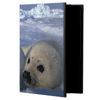 North America, Canada, Quebec, Iles de la 2 iPad Air Cover