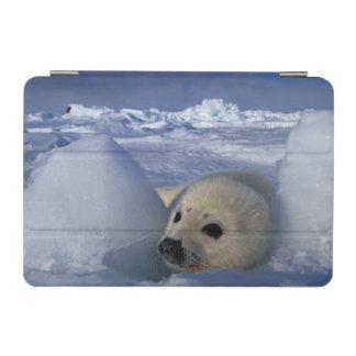 North America, Canada, Quebec, Iles de la 2 iPad Mini Cover