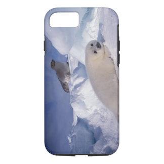 North America, Canada, Quebec, Iles de la 2 iPhone 7 Case