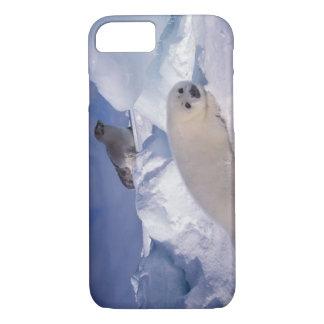 North America, Canada, Quebec, Iles de la 2 iPhone 8/7 Case
