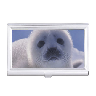 North America, Canada, Quebec, Iles de la Business Card Holder