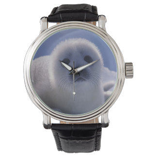North America, Canada, Quebec, Iles de la Wrist Watch